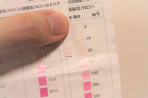 硝酸塩試験紙