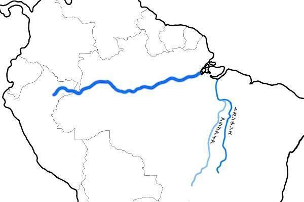 トカンチンス川、アラグアイアイ川