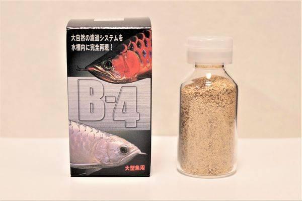 B-4バクテリア